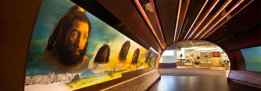 Hall of Human Origins