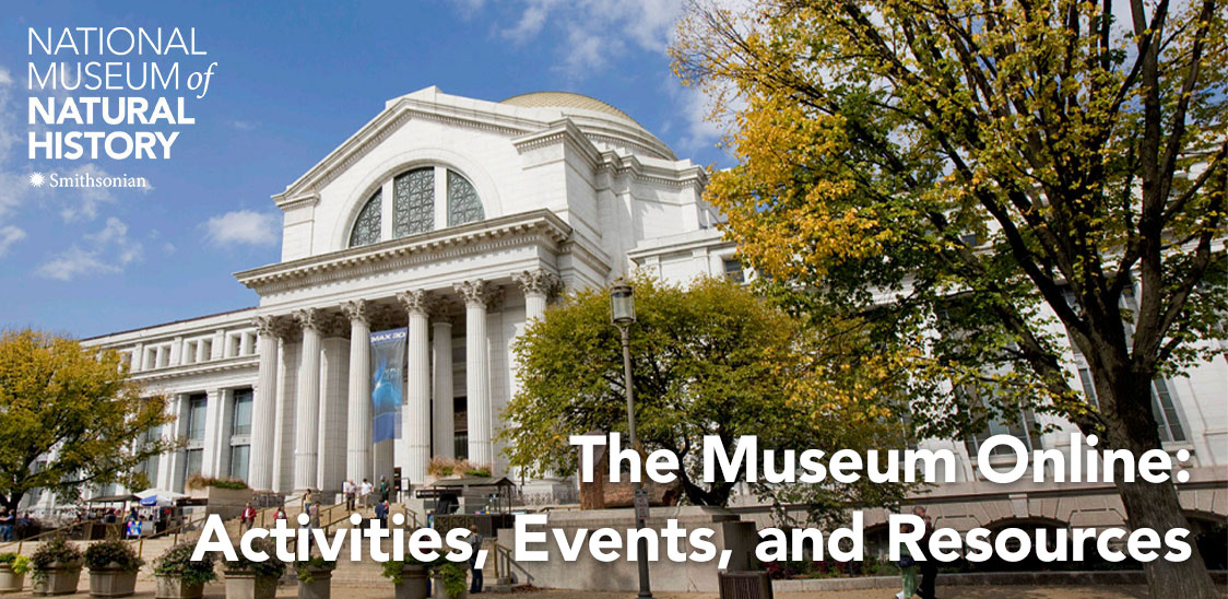 The Museum Online -- Activities, Events, and Resources